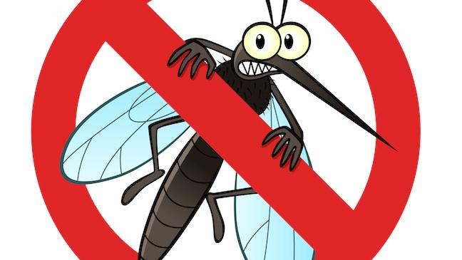 mosquito control services in Brunswick County